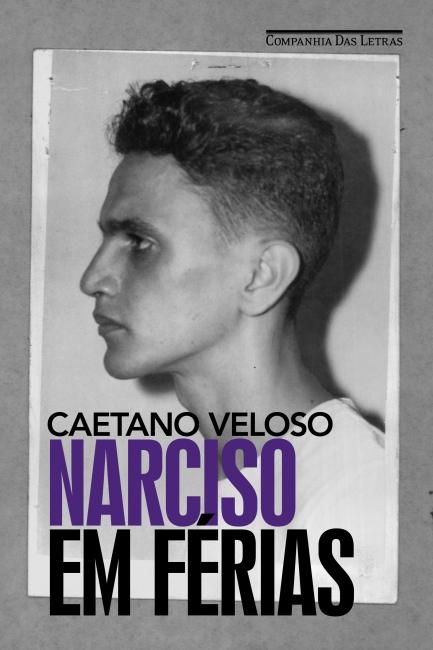 NARCISO EM FÉRIAS - - Grupo Companhia das Letras